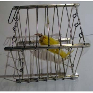 VANISHING BIRD CAGE