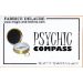 PSYCHIC COMPASS - Fabrice Delaure